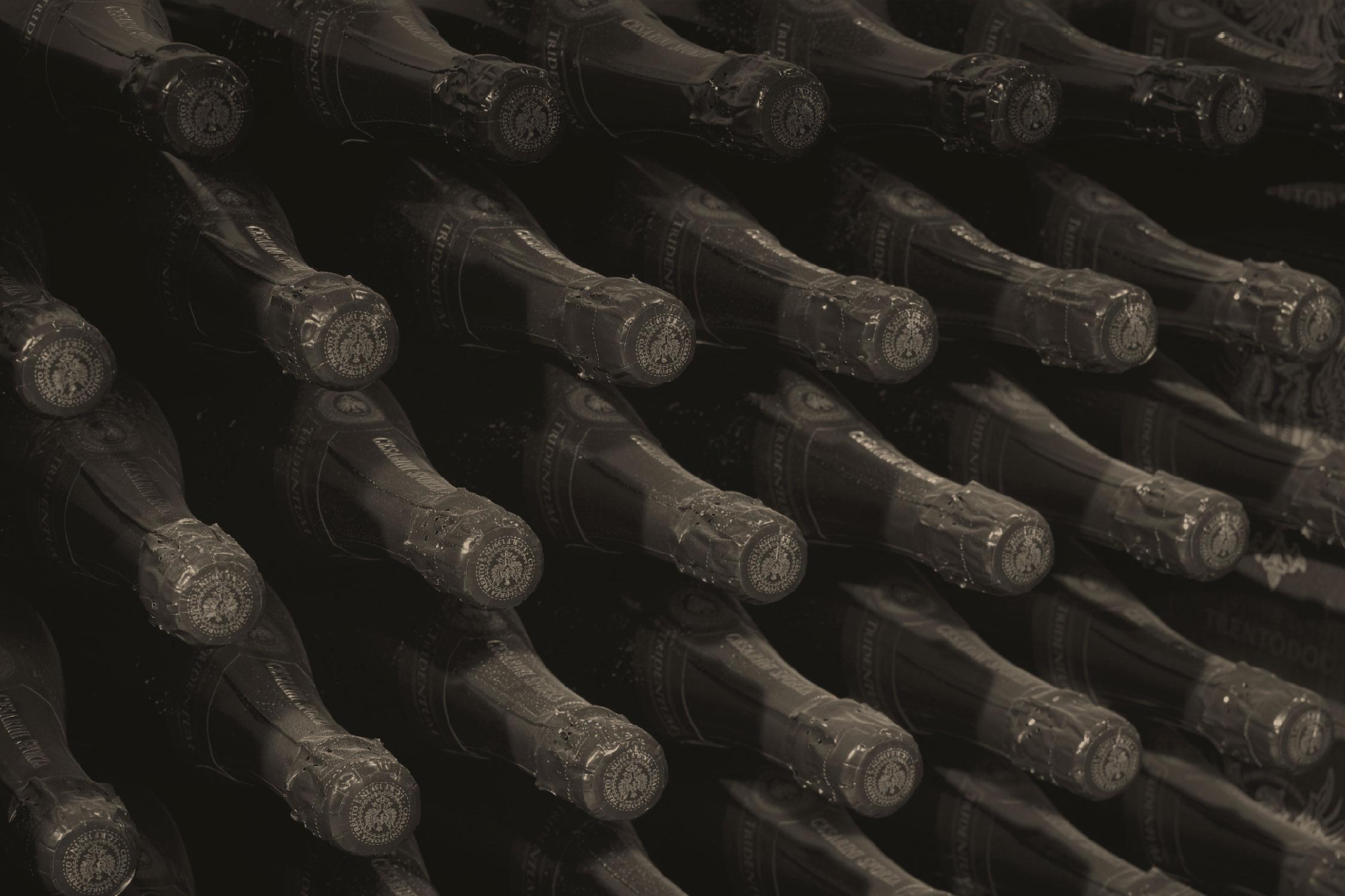 cesarini-sforza-copertina-2250x1500